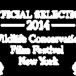 OAS at Wildlife Conservation Film Festival