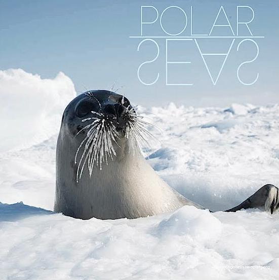 polar seas OAS Homepage